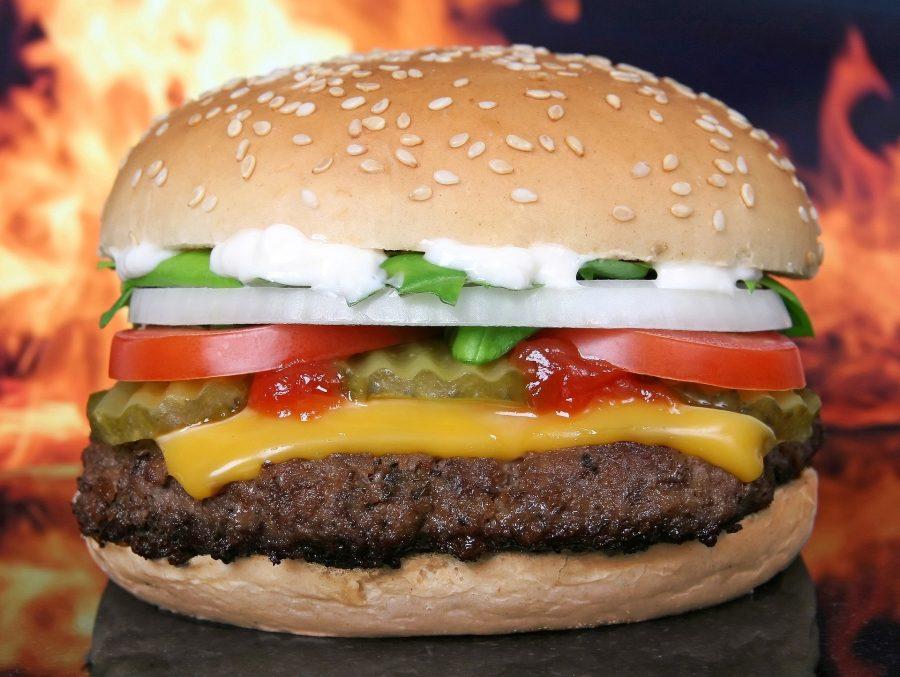 Segundo informações da companhia, estima-se que 8 milhões de pessoas recebem vouchers de refeição no Brasil
